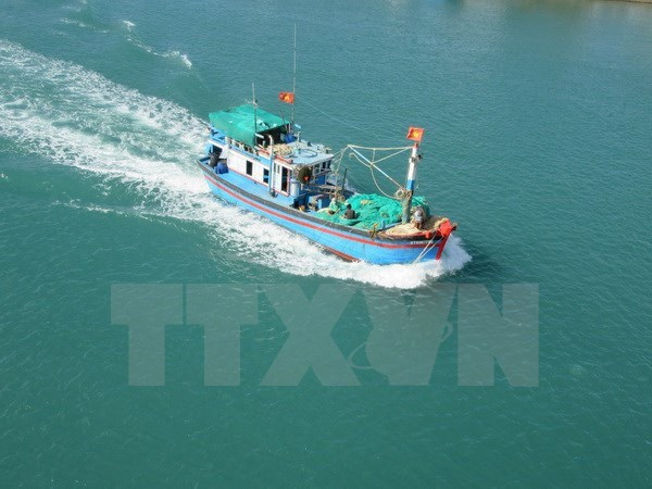 Vietnam, Indonesia FMs talk about shooting of VN's fishing boat hinh anh 1