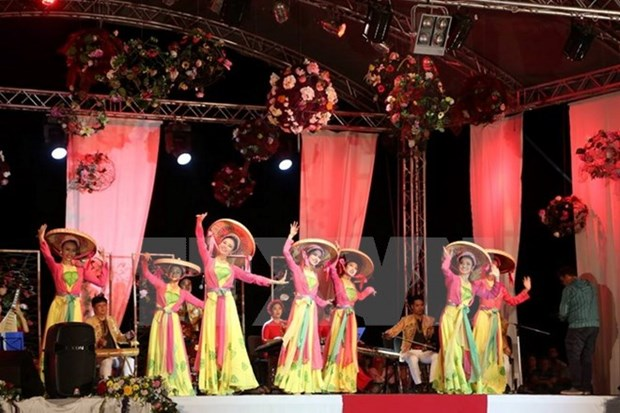 Vietnamese performers take stage at int'l folklore festival hinh anh 1