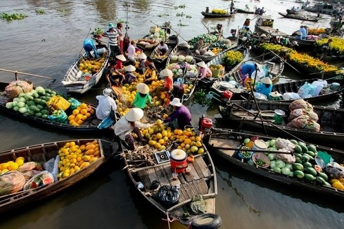 Mekong Delta on right track to boost tourism hinh anh 1