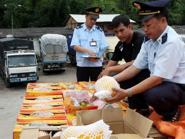 Multi-dollar tax evasion discovered in import companies hinh anh 1