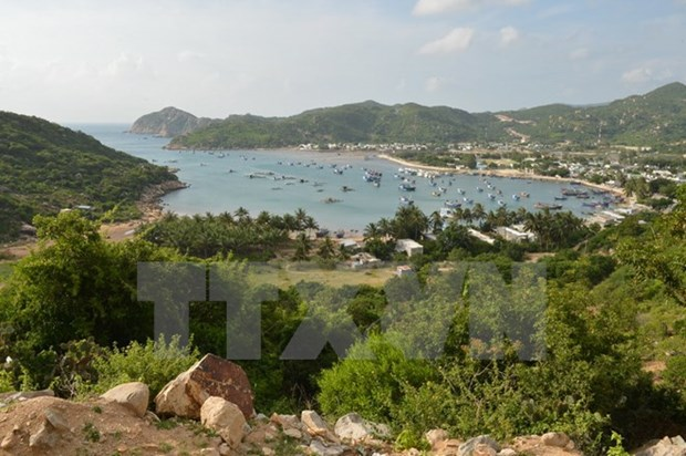 Int'l conference promotes sea-island tourism development hinh anh 1