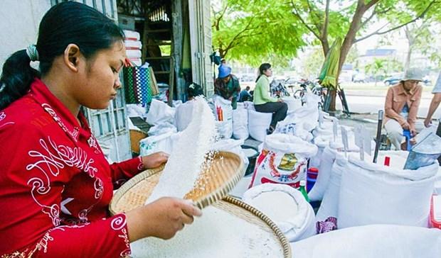 Bangladesh to buy Cambodian rice hinh anh 1
