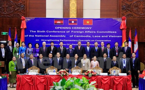 NA's increased oversight over CLV cooperation initiatives sought hinh anh 1