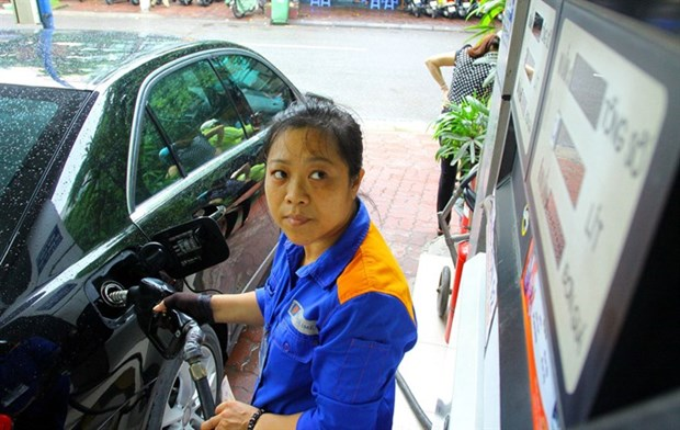 Cleaner Euro 4 fuel hard to get hinh anh 1