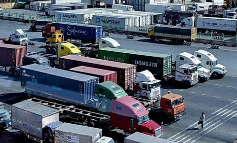 Transport firms move online hinh anh 1