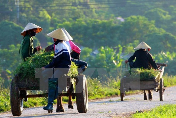 Hai Duong has additional 13 new-style rural areas hinh anh 1
