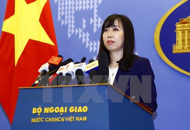 Vietnam strictly deals with law violations: FM spokesperson hinh anh 1