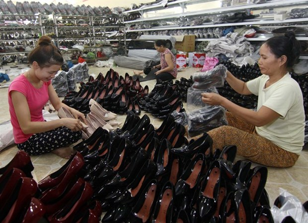 Nearly 73,000 new enterprises set up in seven months hinh anh 1