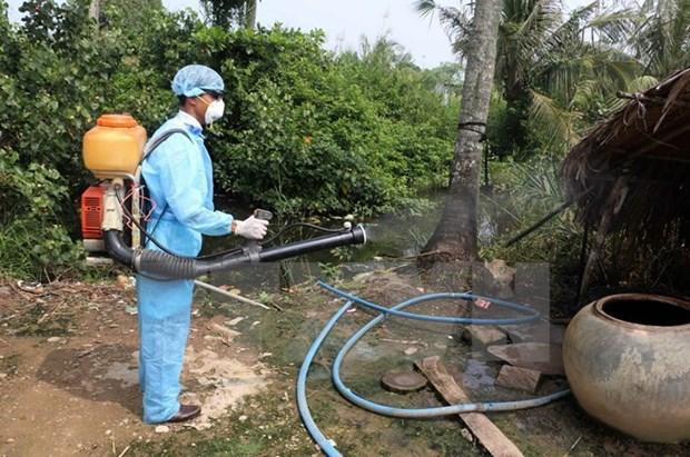 Health Ministry's team inspects dengue fever prevention in Da Nang hinh anh 1