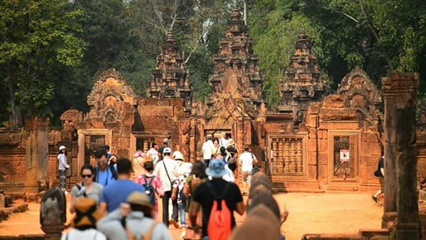 Chinese tourist numbers to Cambodia surge hinh anh 1