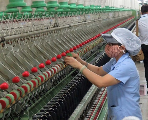 Textile sector needs 22 billion USD investment hinh anh 1