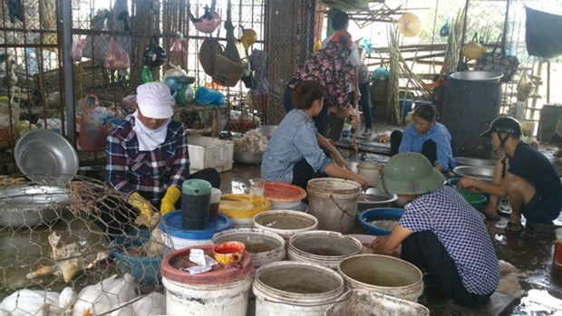 Thanh Hoa rife with illegal slaughterhouses hinh anh 1
