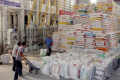 Vietnam's seven-month export revenue up 18.7 pct hinh anh 1