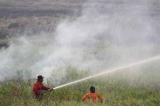 SEA Games: Malaysia urges Indonesia to control haze hinh anh 1