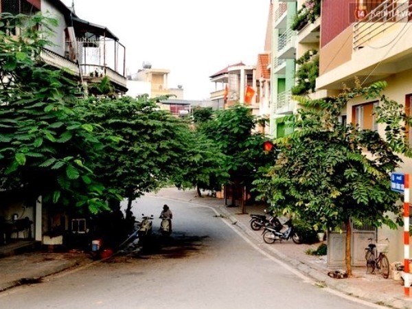 Hanoi to launch art, food space in Tay Ho hinh anh 1