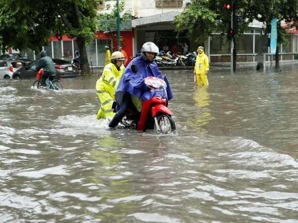 Japan helps Hanoi improve flood prevention capacity hinh anh 1