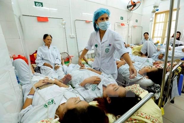 Hanoi works to minimize dengue fatalities hinh anh 1