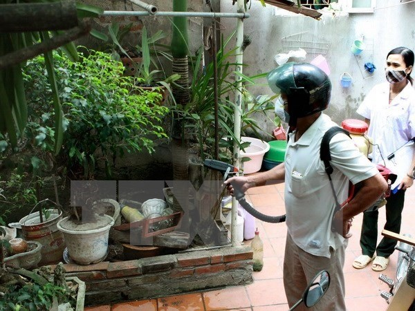 Hanoi sees six dengue fever fatalities hinh anh 1