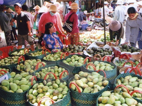 Forum promotes vegetables, fruits trade to China hinh anh 1