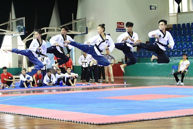 Taekwondo artists target four golds in SEA Games hinh anh 1