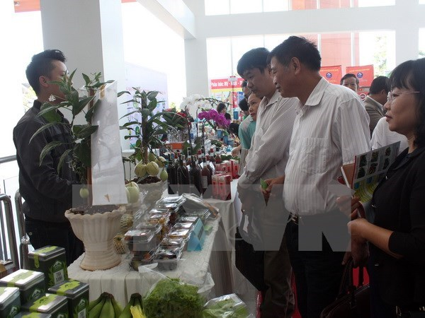 Conference discusses developing Lam Dong high-tech farming hinh anh 1