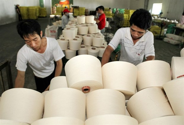 Dinh Vu Polyester Fibre Plant to restart production hinh anh 1