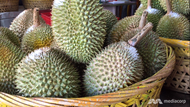 Malaysia to hold durian festival in China hinh anh 1