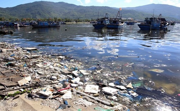 Coastal Da Nang city faces severe pollution problems hinh anh 1