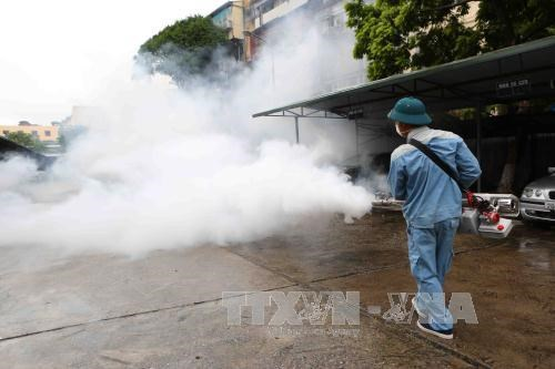 Health ministry steps up efforts to prevent dengue fever outbreak hinh anh 1