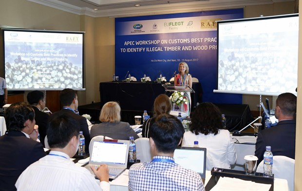 APEC members share experience in illegal wood trade control hinh anh 1