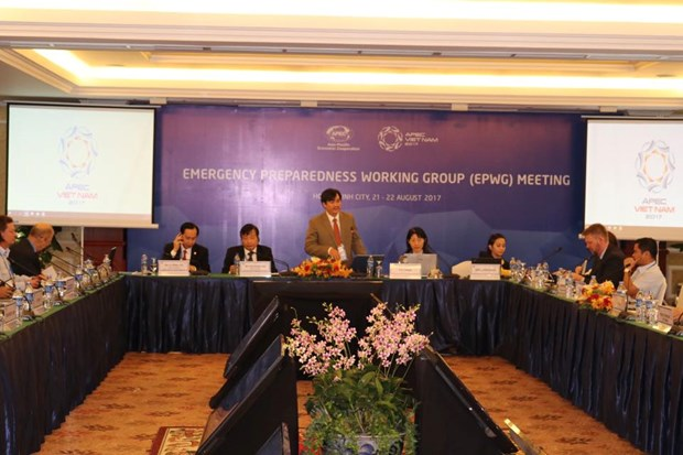 APEC members share experience in emergency preparedness hinh anh 1