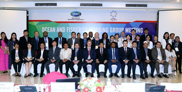 APEC's action plan for sustainable fisheries discussed hinh anh 1