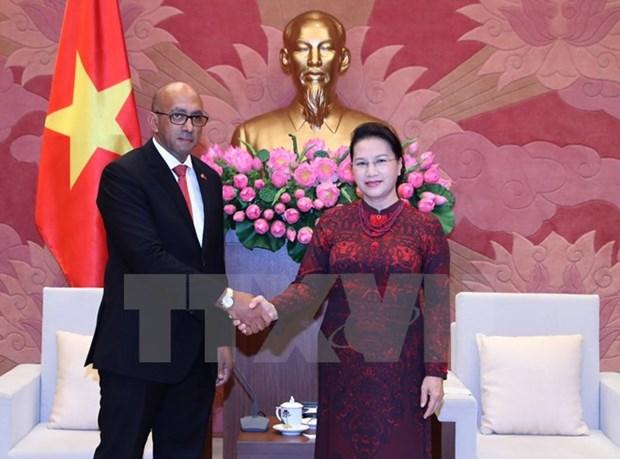 NA leader lauds ambassador's efforts to tighten Vietnam-Cuba links hinh anh 1