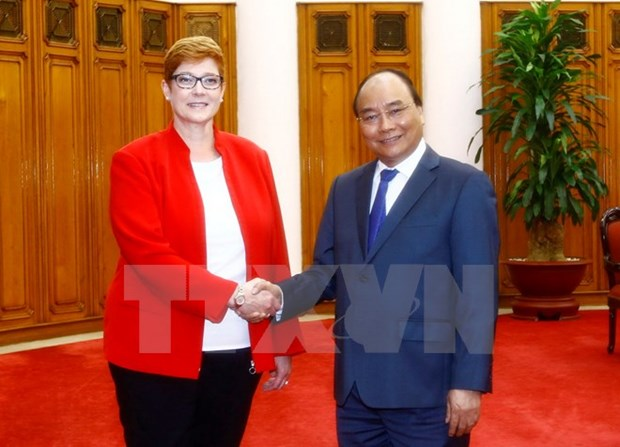 Vietnamese government backs increased defence link with Australia hinh anh 1