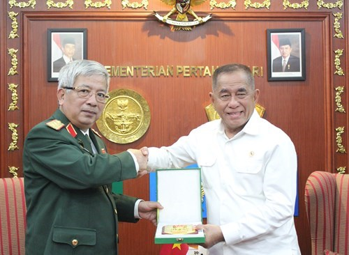 Vietnam, Indonesia eye joint vision statement on defence cooperation hinh anh 1