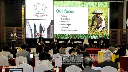 APEC talks economic, health issues, Food Security Week closes hinh anh 1