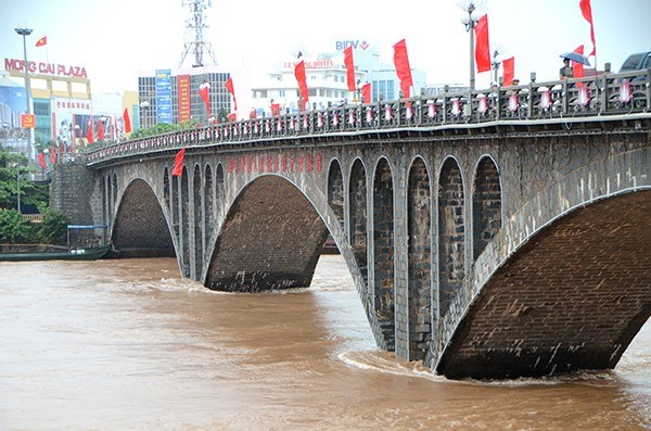Seven Chinese nationals fined for illegally entering Vietnam hinh anh 1