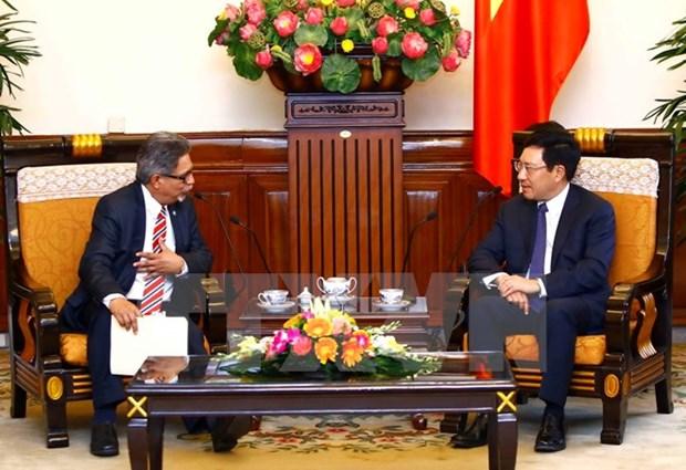 Vietnam, El Salvador hold first political consultation hinh anh 1