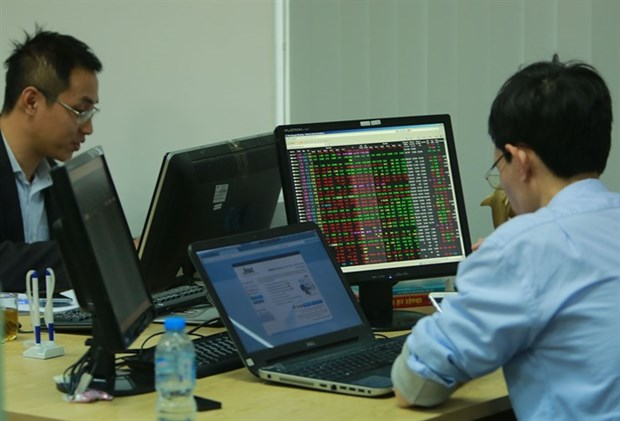 Speculative stocks heat the market hinh anh 1