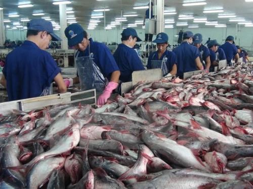 Strong marketing strategy needed to bolster tra fish exports hinh anh 1