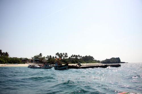 Quang Ngai seeks measures for sustainable tourism on Ly Son island hinh anh 1