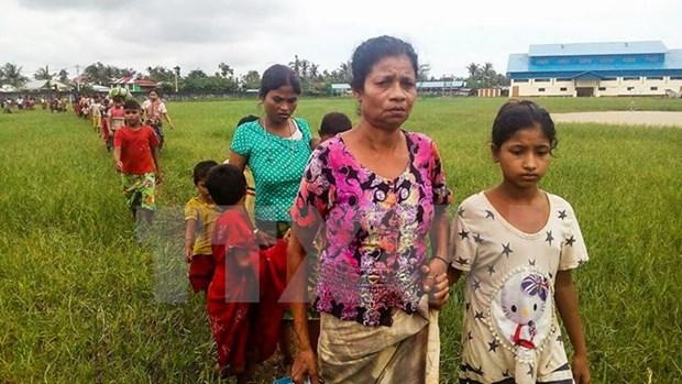 Myanmar: Tens of thousands of people in Rakhine flee into Bangladesh hinh anh 1