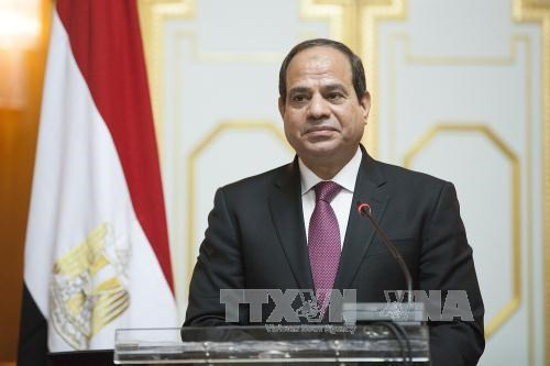 Egyptian President to pay State visit to Vietnam hinh anh 1