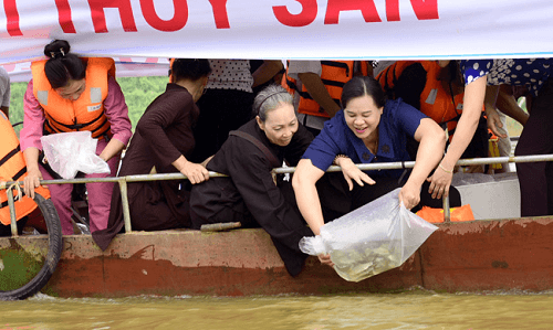 Mass fish release on Lo River on Vu Lan fest hinh anh 1