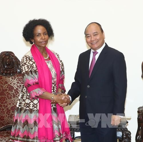 PM: Vietnam sees South Africa as leading partner in Africa hinh anh 1