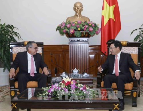 Vietnam, Cuba promote cooperative ties hinh anh 1