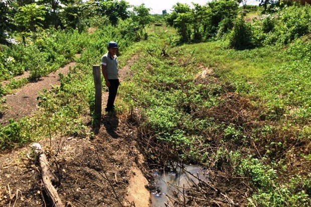 Irrigation channel unused amidst drought hinh anh 1
