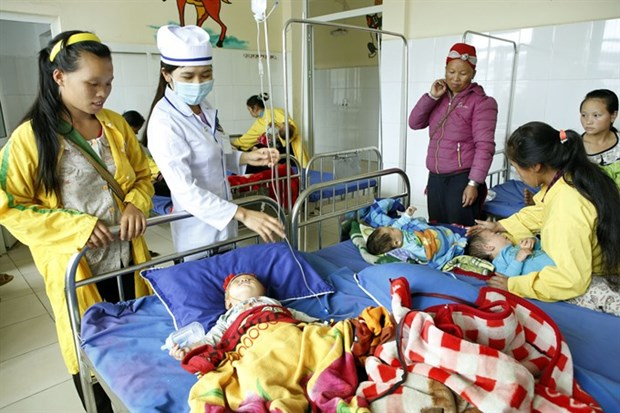 Students who join health insurance to get life-long code hinh anh 1