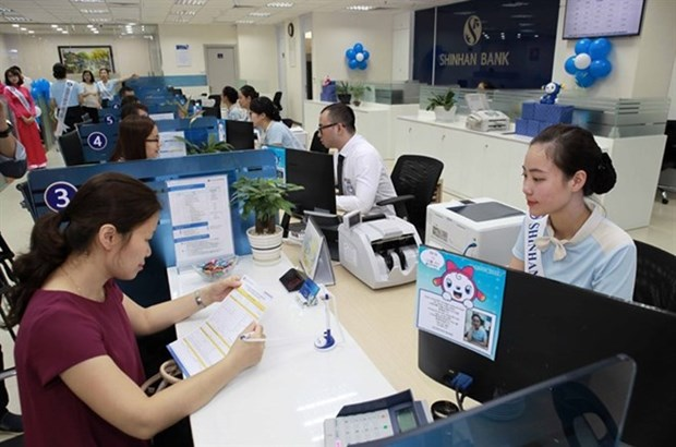 VAMC needs more capital to settle bad debts hinh anh 1