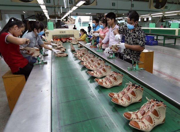 Leather, shoe exports top 9.6 billion USD hinh anh 1